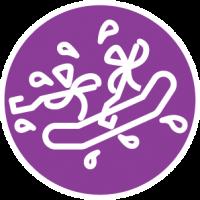 WV raft logo